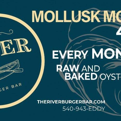 Mollusk Mondays