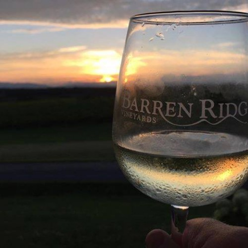 Sunset Concerts in the Vineyard