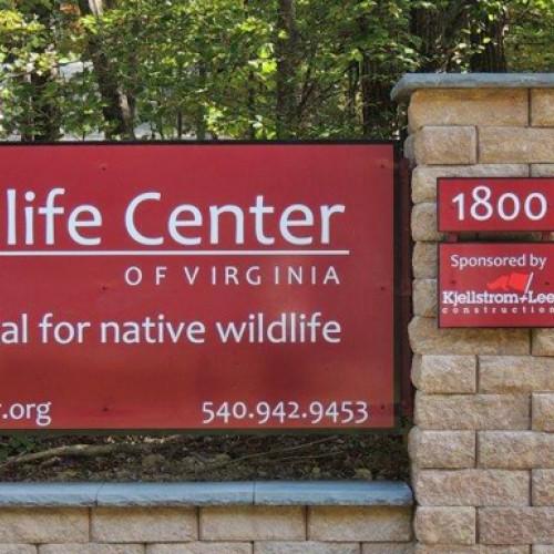 Wildlife Center Spring 2020 Open Houses