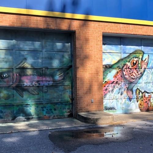 Trout Mural by Cody Brogan